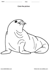 color a sea lion - Painting Worksheets For Kindergarten