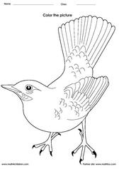 bird 1 - Painting Worksheets For Kindergarten