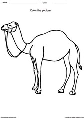 color a camel click to print - Kids Painting Pictures Printable