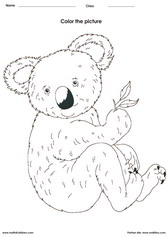 color a koala - Painting Worksheets For Kindergarten